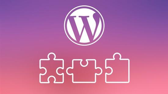WordPress Plugins Kurs von Jonas aus Dresden von den Beratern