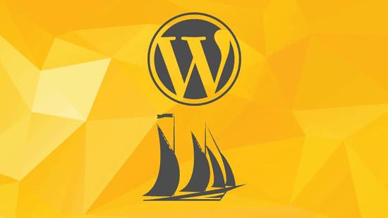 WordPress ist das meist genutzte Inhaltsverwaltungssystem!